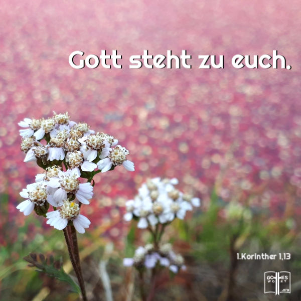 ✚ Gott steht zu euch. 1.Korinther 10,13 Lese: https://www.gottes-wort.com/daemonen.html #bibel #jesuschristus #daemonen #gotteswort