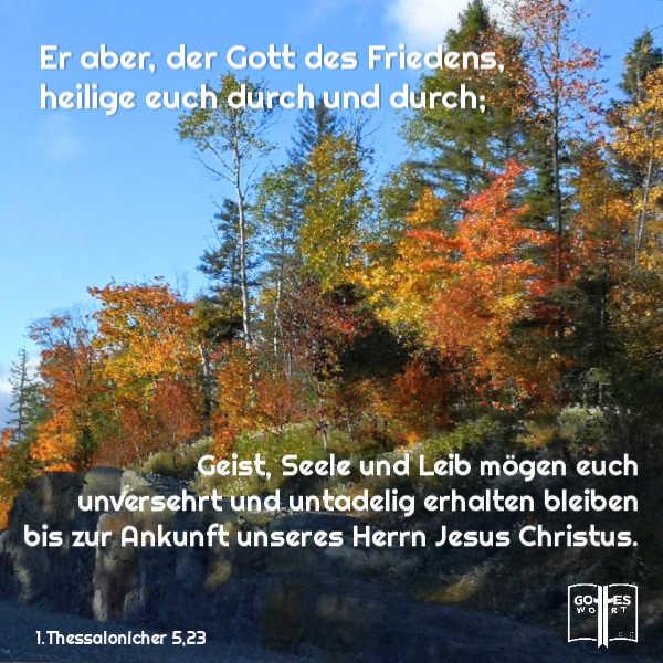 Er aber, der Gott des Friedens, heilige euch durch und durch; Geist, Seele und Leib mögen euch unversehrt... 1.Thes 5,23 https://www.gottes-wort.com/was-ist-meine-seele.html
