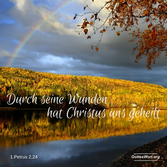 Durch seine Wunden hat Christus uns geheilt. 1.Petrus 2,24