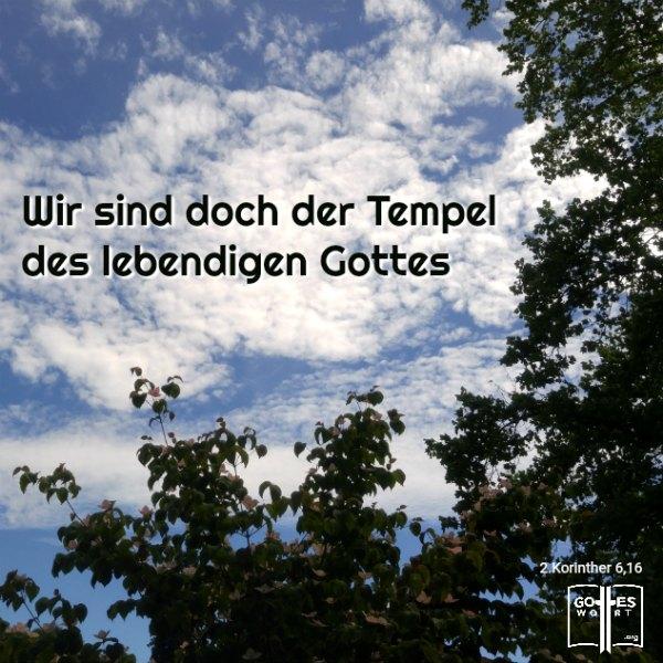 Wir sind doch der Temple des lebendigen Gottes! 2.Korinther 6,16 HALLELUJA!    #gotteswort #koenigskind #temple