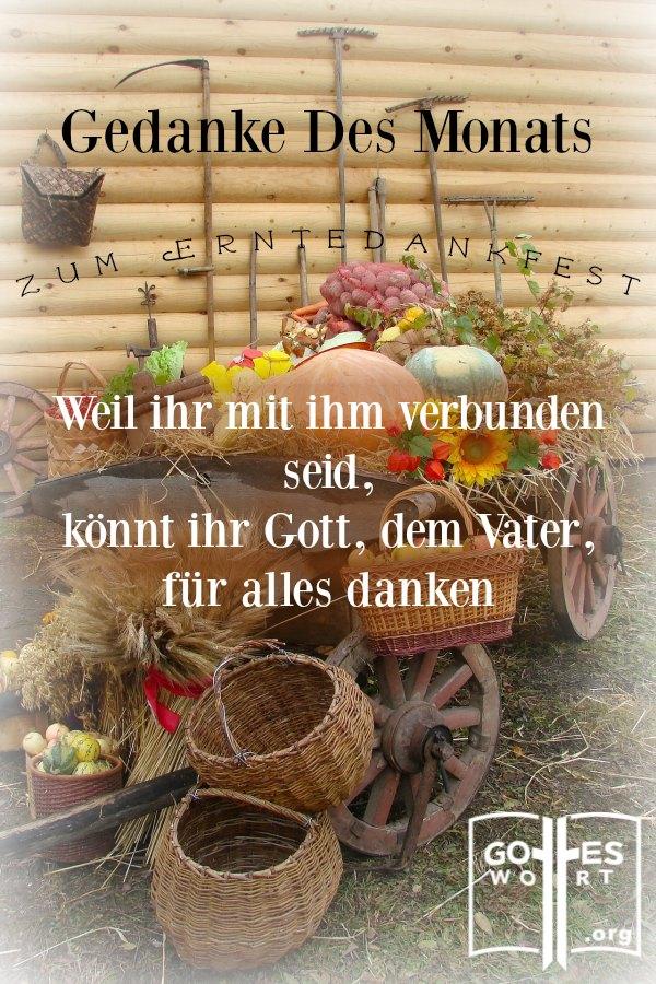 Persönliche, erfreuliche Dankbarkeit führt zum Ausdruck eines zufriedenen Herzens. Lasst uns Gott für alles danken. erntedankfest #dank #dankbarkeit lese www.gottes-wort.com/erntedankfest.html