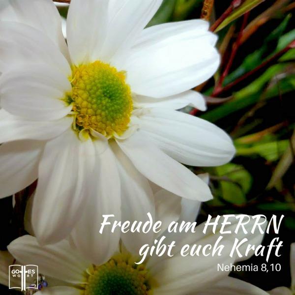Freude am Herrn gibt euch Kraft! Nehemia 8,10 Lese weiter: https://www.gottes-wort.com/kraft-durch-freude.html #freude #kraft #gotteswort