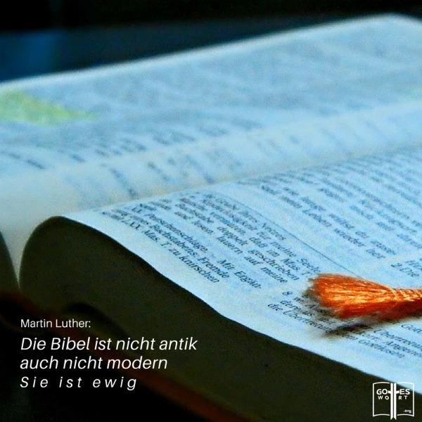 ✚ Die Bibel ist nicht antik, auch nicht modern. Sie ist ewig. ~ Martin Luther. Aber welche Bibel ist die richtige?  Antwort: https://www.gottes-wort.com/die-bibel.html #diebibel #bibel #gotteswort