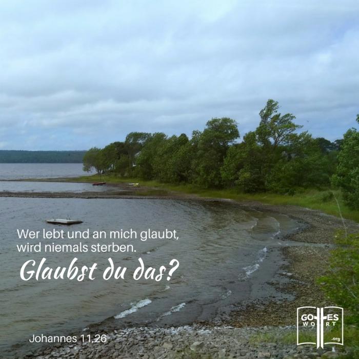 Sturm in Leben?  Johannes 11,26