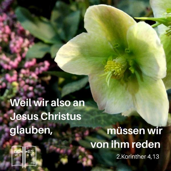 Wir haben Gottes Geist, der uns auf Gott vertrauen lässt. ... Weil wir also an Jesus Christus glauben, müssen wir von ihm reden.  2.Korinther 4,13 (weisse Blumen)