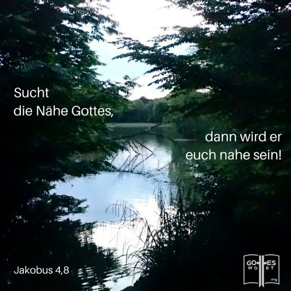 Sucht die Nähe Gottes, dann wird er euch nahe sein! Wascht ´die Schuld` von euren Händen, ihr Sünder! Reinigt eure Herzen, ihr Unentschlossenen! Jakobus 4,8