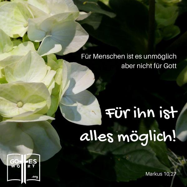 Realitaet im christlichen Leben ... Gottes Wort:   Markus 10,27  Lese weiter: http://www.gottes-wort.com/die-realitaet.html
