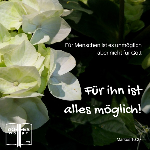 Realitaet im christlichen Leben ... Gottes Wort:   Markus 10,27  Lese weiter: https://www.gottes-wort.com/die-realitaet.html