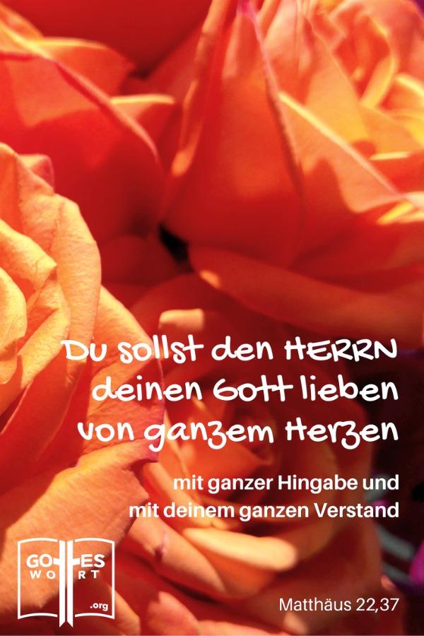 ✚  Die Botschaft: Du sollst den Herrn, deinen Gott, lieben, … mit deinem ganzen Herzen, Seele und Denken. Mat 22,37 https://www.gottes-wort.com/botschaft.html #gotteswort #botschaft #leiben