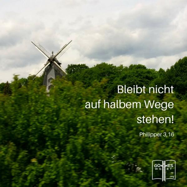 Bleibt nicht auf dem halben Weg stehen. Philipper 3,16 Windmühle, Deutschland