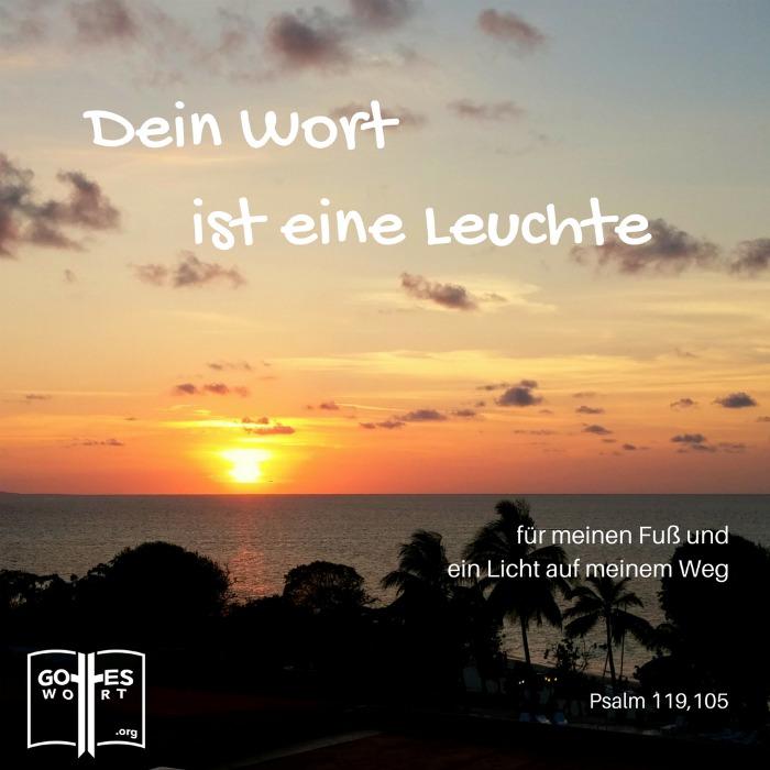 Dein Wort ist meines Fußes Leuchte und ein Licht auf meinem Weg. Psalm 119,105 (Kuba, Abendsonne)
