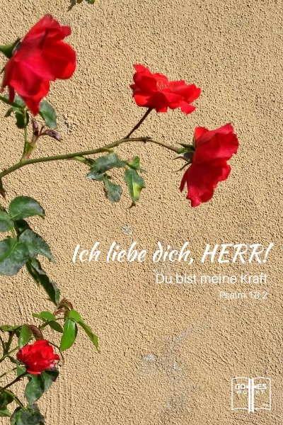 Ich liebe dich, HERR! Psalm 18,2