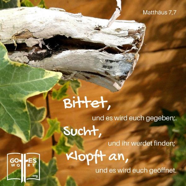 Bittet, und es wird euch gegeben; sucht, und ihr werdet finden; klopft an, und es wird euch geöffnet. Matthäus 7,7