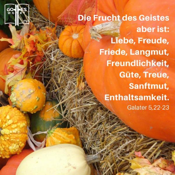 Die Frucht des Geistes sind die vorgeschriebenen Eigenschaften die in unserem christlichen Leben erkennbar sein sollten.