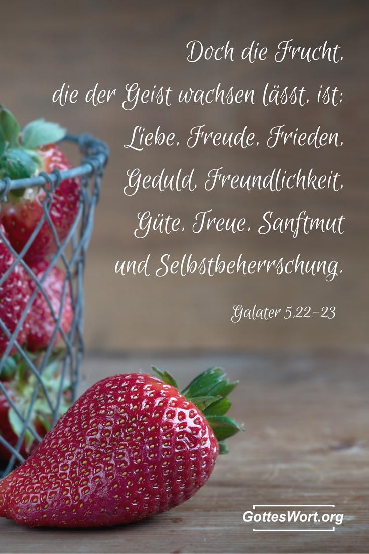 Die Frucht des Geistes sind die vorgeschriebenen Eigenschaften die in unserem christlichen Leben erkennbar sein sollten, sowie Liebe, Freude ...