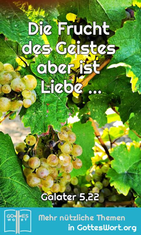 Die Frucht des Geistes ist Liebe und ....