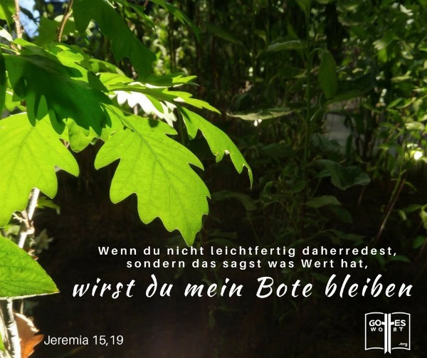 Wenn du nicht leichtfertig daherredest, sondern das sagst was Wert hat, wirst du mein Bote bleiben, Jeremia 15,19 Lese: Entscheidung für Veränderung: https://www.gottes-wort.com/auf.html #veränderung
