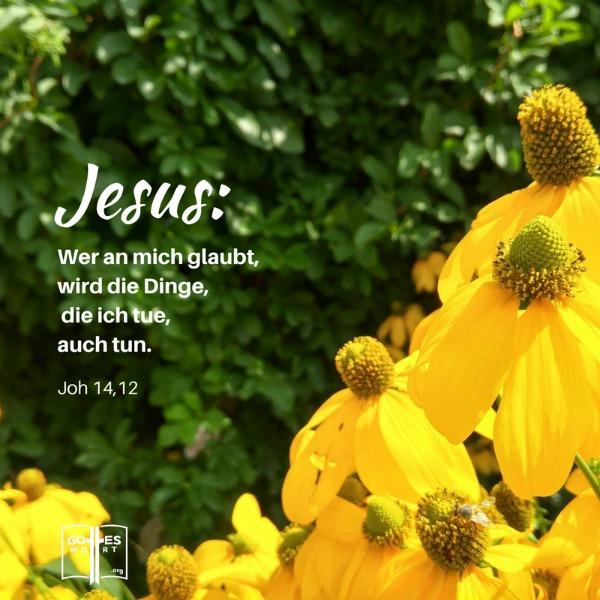 Das Hände auflegen - biblisch? Sehe: Johannes 14,12 Antwort: http://www.gottes-wort.com/haende-auflegen.html