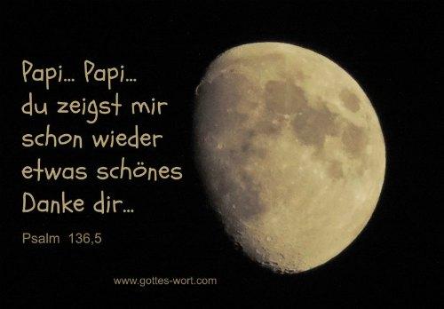 Papi, Papi … du zeigst mir schon wieder etwas schönes … Danke dir … Psalm 136,5