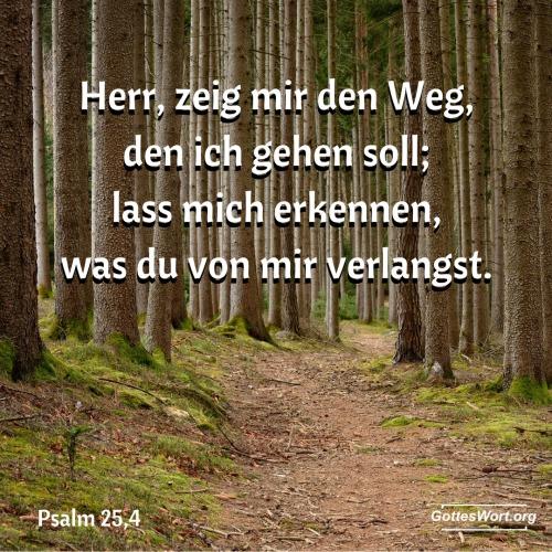 Psalm 25,4