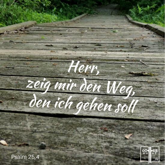 Herr, zeig mir den Weg den ich gehen soll. Psalm 25,4