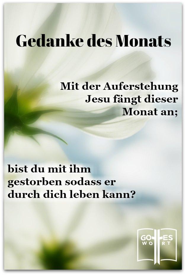 Bist du neu geboren? Ist Christus dein Herr? Was ist 'neu geboren?'  lese www.gottes-wort.com/gefuehle.html #auferstehung #neugeburt #ewigesleben #persönlicheeinladung