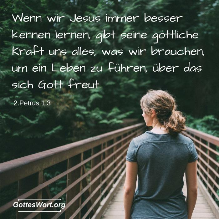 Wenn wir Jesus immer besser kennen lernen, gibt seine göttliche Kraft uns alles, was wir brauchen, um ein Leben zu führen, über das sich Gott freut. 2.Petrus 1,3