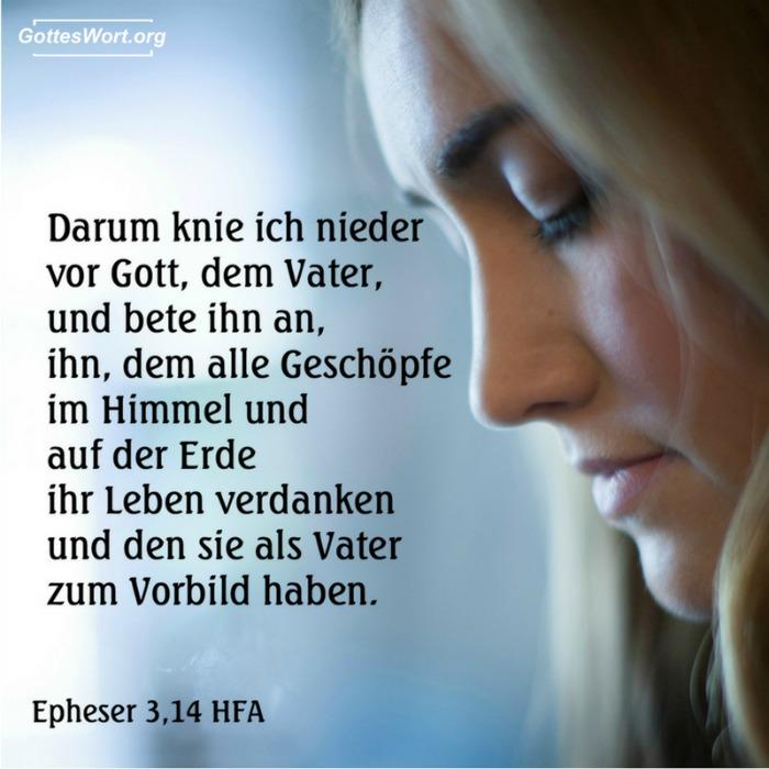 Darum knie ich nieder vor Gott, dem Vater, und bete ihn an, ihn, dem alle Geschöpfe im Himmel und auf der Erde ihr Leben verdanken und den sie als Vater zum Vorbild haben. Ephesians 3,14-15