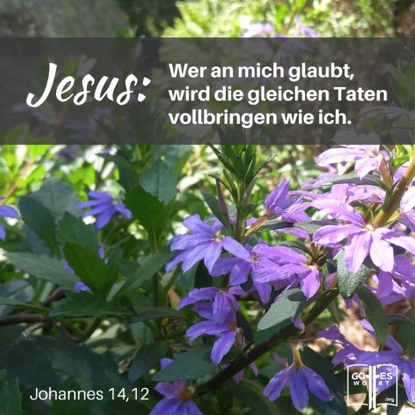 Erwartung gegründet auf Glauben bringt Resultate!  Und wie? Lese hier: http://www.gottes-wort.com/erwartung.html