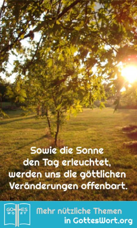 ✚ Sowie die Sonne den Tag erleuchtet, werden uns die göttlichen Veränderungen offenbart. https://www.gottes-wort.com/gewohnheiten.html #gotteswort #gewhonheiten #bibel
