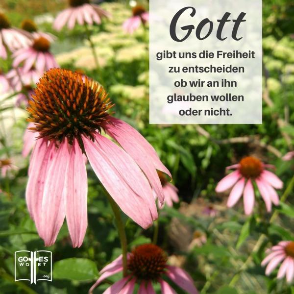 Gottes Gerechtigkeit. Gott gibt uns die Freiheit zu entscheiden ob wir an ihn glauben wollen oder nicht. ... http://www.gottes-wort.com/gottes-gerechtigkeit.html