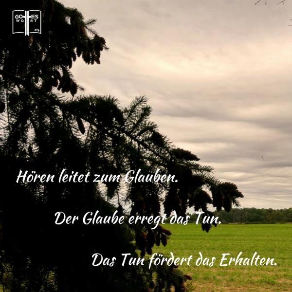 Hören leitet zum Glauben.Der Glaube erregt das Tun.Das Tun fördert das Erhalten. Weiterlesen: http://www.gottes-wort.com/hoeren.html