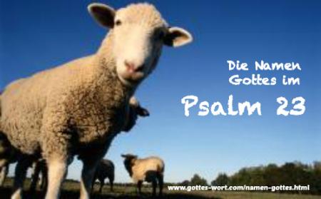 Die Namen Gottes im 23.Psalm: