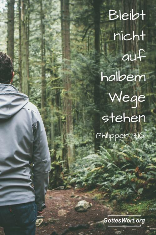 Bleibt nicht auf dem halben Weg stehen! Philipper 3,16