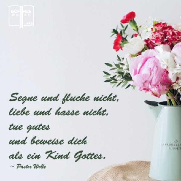✚ Segne und fluche nicht, liebe und hasse nicht  Lese hier: https://www.gottes-wort.com/segnen.html #segnen #fluche #liebe #hasses