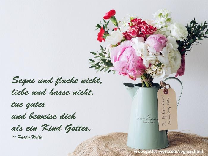 Segne und fluche nicht, liebe und hasse nicht  Lese hier: https://www.gottes-wort.com/segnen.html