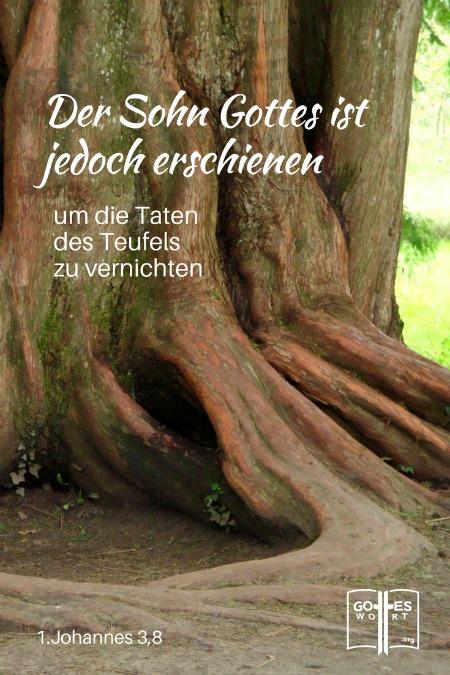 Unbegrenzte Leben (1.Johannes 3,8 ....