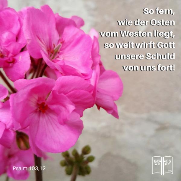 Psalm 103,12 ... es gehoert in die Vergangenheit.