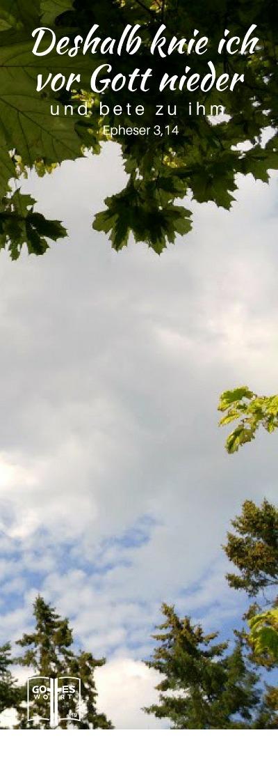 Darum knie ich nieder vor Gott, dem Vater, und bete ihn an, ihn, dem alle Geschöpfe im Himmel und auf der Erde ihr Leben verdanken..Eph 3,14-15 #gebete https://www.gottes-wort.com/gebete.html