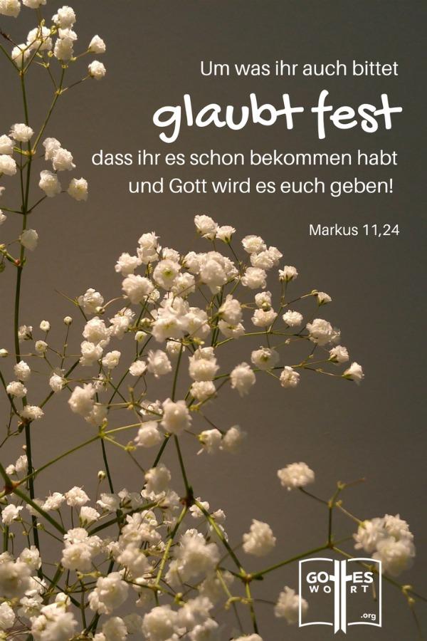 Was ich glaubensvoll und schriftgemäß ausspreche, werde ich erhalten. Gottes Zusagen sind für mich erreichbar im Namen Jesus. Markus 11,23-24