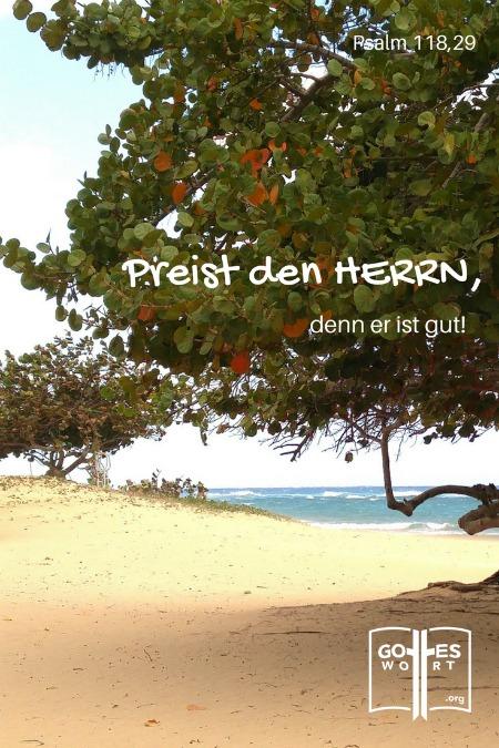 Preist den Herrn, denn er ist gut! Psalm 118,29 Kuba Strand