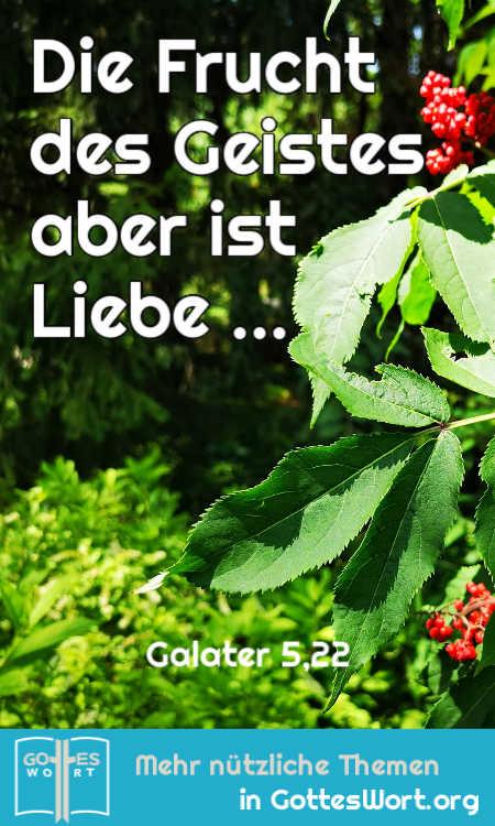 Die Frucht des Geistes aber ist Liebe, Freude, Friede, Langmut, Freundlichkeit, Güte, Treue, Sanftmut, Selbstbeherrschung.  Galater 5,22