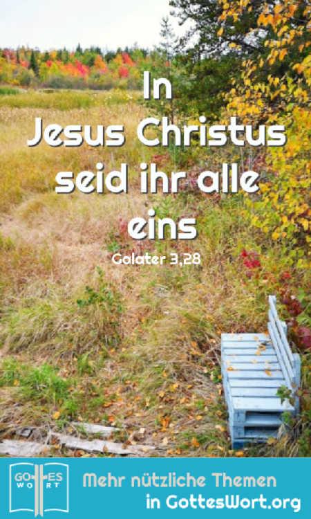 ✚ In Jesus Christus seid ihr alle eins...Als seine Erben bekommt ihr alles, was Gott ihm zugesagt hat. Galater 3,28-29 https://www.gottes-wort.com/in-christus.html #inchristus #heiland