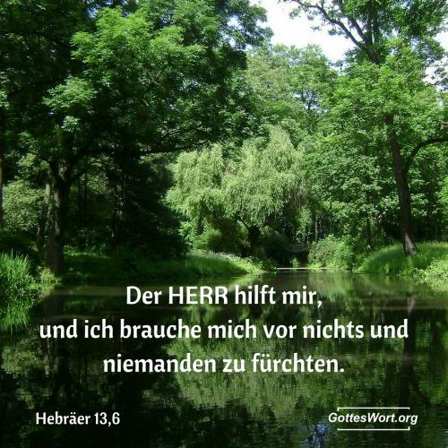 Hebraeer 13,6