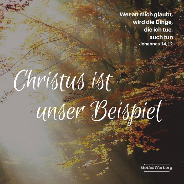 Johannes 14,12 ... Wer an mich glaube, wird die Dinge, die ich tue, auch tun!