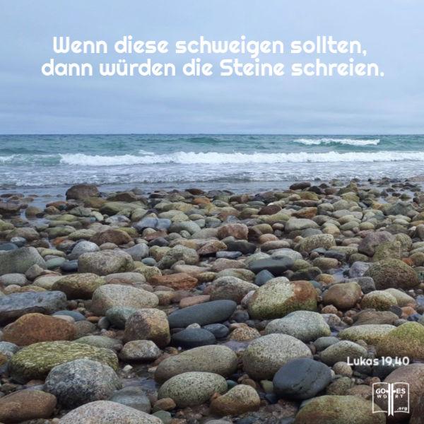 ✚ Wenn sie schweigen, werden die Steine schreien ... Lukas 19,40  lese www.gottes-wort.com/geboren.html #gotteswort #gutebotschaft