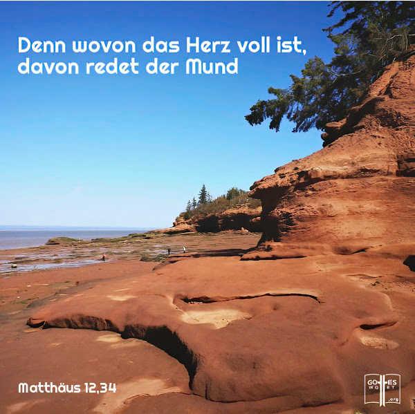 Denn wovon das Herz voll ist, davon redet der Mund, (Matthaeus 12,34)