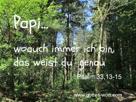 Papi … woauch immer ich bin, das weist du genau. Psalm 33,13-15