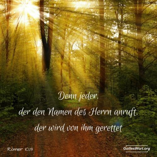 Denn jeder, der den Namen des Herrn anruft, der wird von ihm gerettet. Römer10,13