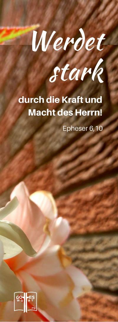 Und schließlich: Werdet stark durch die Kraft und Macht des Herrn! ... Epheser 6,10